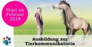 Tierkommunikation Ausbildung