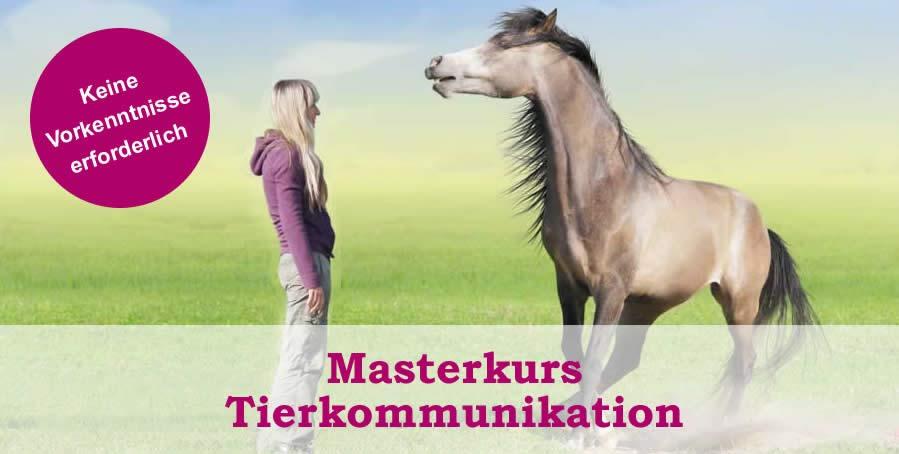 Tierkommunikation lernen Köln