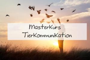 Tierkommunikation Ausbildung Trier